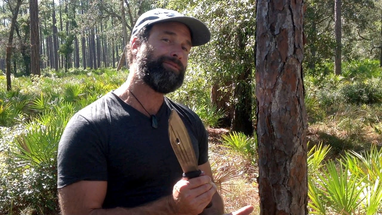 Avoid Starvation: Survive With No Food By Eating A Pine Tree