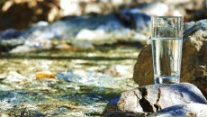 drinking water from the river