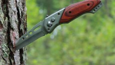 knife in a pine tree