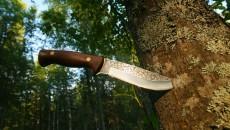 knife in a tree