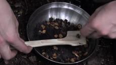 frying dandelion
