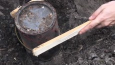 how to make birch oil
