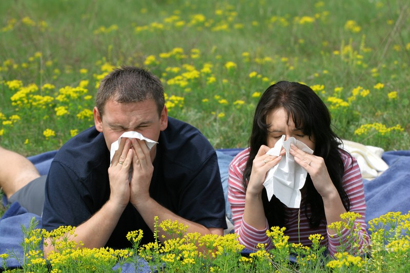 blowing nose allergies