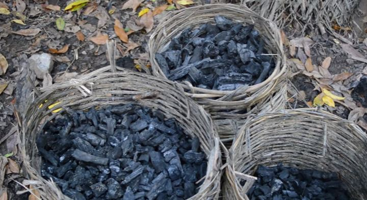 (VIDEO) Using the Mound Method, You Can Learn How to Make Charcoal to Have Ready for Doomsday!