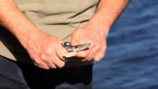 fish snare trigger
