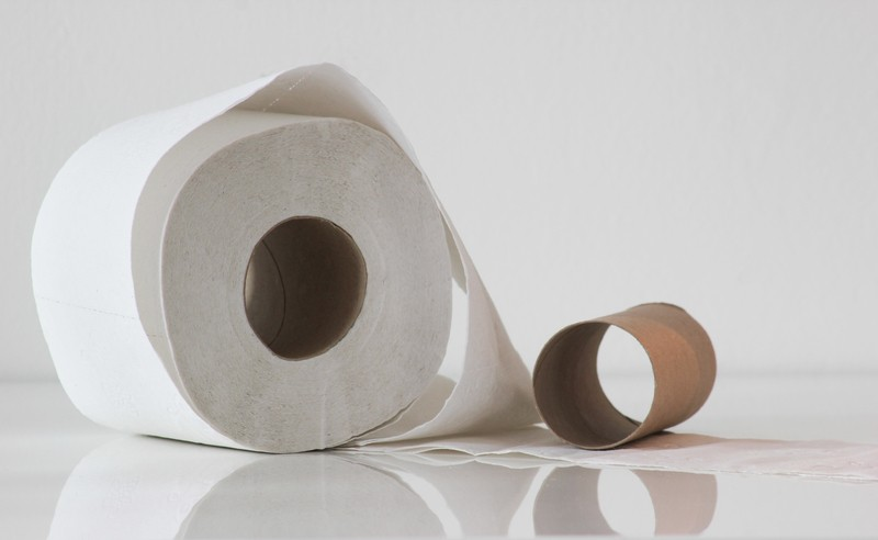 The Best Homemade Substitutes For Toilet Paper Die Hard