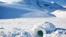 igloo in the snow
