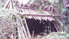 bushcraft-shelter