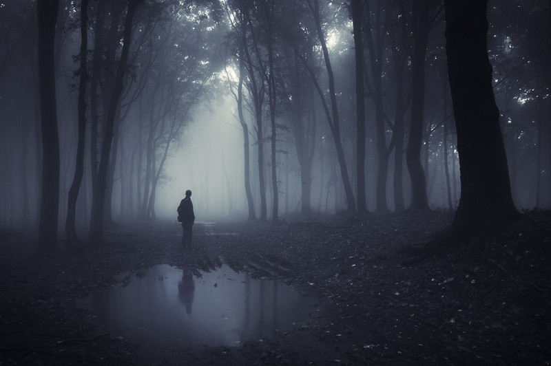 man-in-forest-in-the-fog