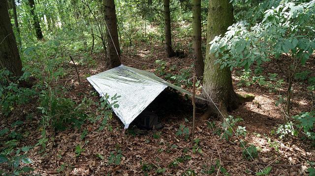 tarp-shelter