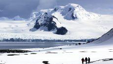 Antartic