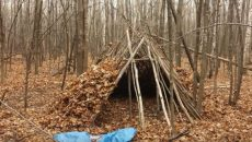 Stick Shelter