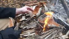 wet weather fire making