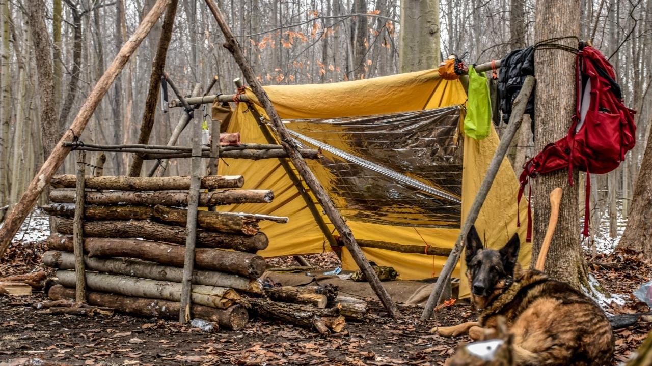 bushcraft camp
