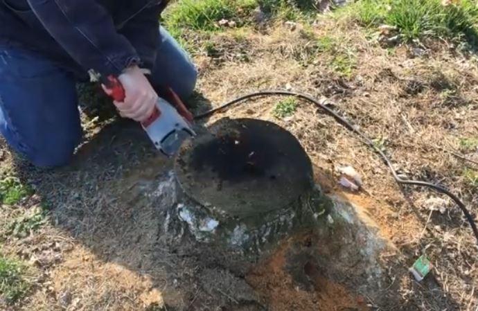 stump and drill