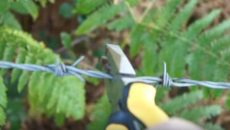 barbed wire cutters