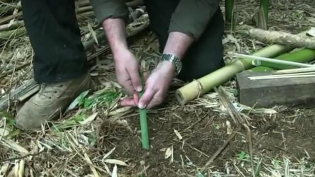 bamboo tent pegs