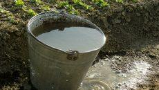 bucket full of water