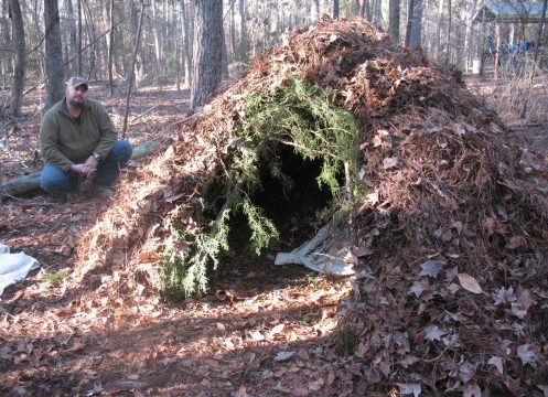 spider shelter